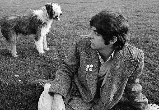 Paul McCartney e a cadela Martha